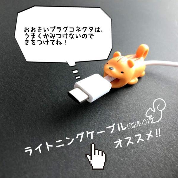 ケーブルバイト Lightningケーブル MicroUSB スマホ充電ケーブル断線保護 ギフトラッピング対応 メール便なら送料無料 iPhone 8 X XS ライトニング plaisir 09