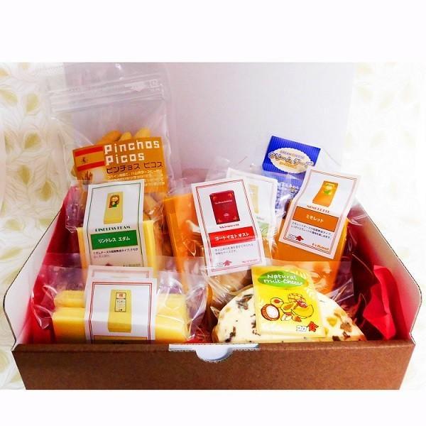 グルメギフト  ナチュラルチーズ &ピコス詰め合わせ 10種セット