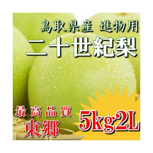 二十世紀梨 20世紀梨 鳥取県 東郷 赤秀 5kg 2L(16玉) 贈答用 進物用 果物 お取り寄せ