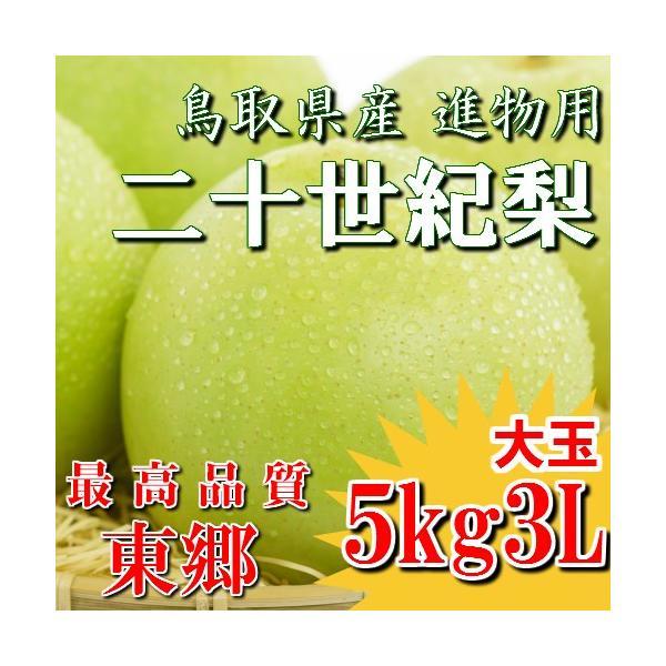 二十世紀梨 20世紀梨 鳥取県 東郷 赤秀 5kg 3L(12~14玉) 大玉 贈答用 進物用 果物 お取り寄せ