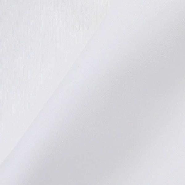 ワイシャツ Yシャツ メンズ らくらくオーダー 綿100% 軽井沢シャツ ピンホールカラー Y10KZZP02 plateau-web 06