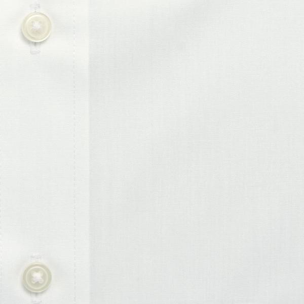 ワイシャツ メンズ 長袖 形態安定 形状記憶 標準型 CARPENTARIA ボタンダウン Y12CAB101 plateau-web 06