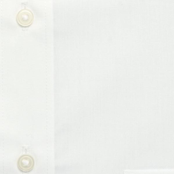 ワイシャツ メンズ 長袖 形態安定 形状記憶 標準型 CARPENTARIA レギュラーカラー Y12S3R101|plateau-web|06
