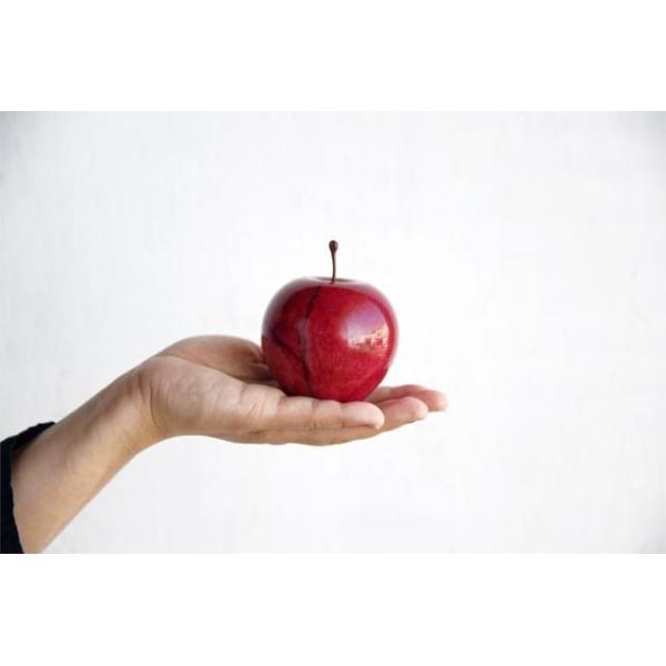 マーブルアップル Marble Apple レッド グリーン ブラウン 大理石 ペーパーウェイト リンゴ 林檎 オブジェ 置き物|play-d-play|04