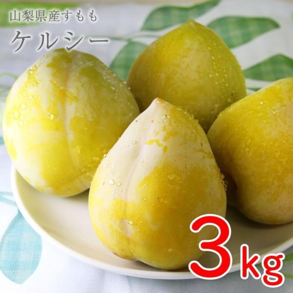 山梨県産 すもも (プラム) ケルシー 3kg箱 36〜42玉前後 plumfarm