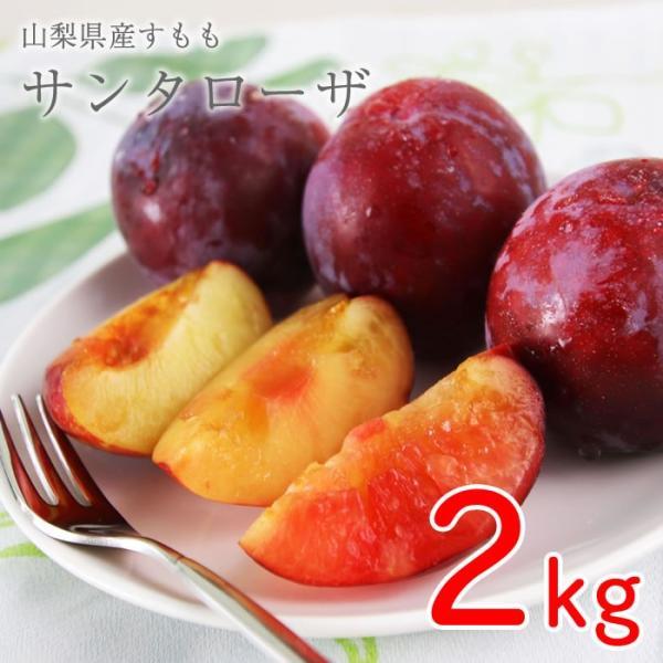 山梨県産 すもも (プラム) サンタローザ 2kg箱 24〜28玉前後|plumfarm