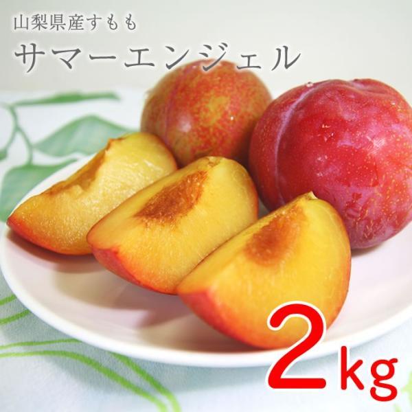 山梨県産 すもも サマーエンジェル 2kg箱 24〜28玉前後 plumfarm