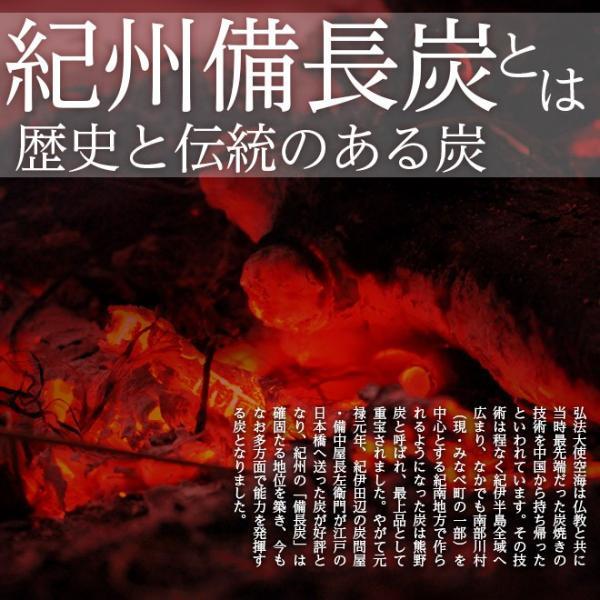 日本製 すのこ ベッド すのこ型除湿マット 防ダニ抗菌防臭 備長炭 帝人 エアジョブ ベッド用 シングル 結露 すのこマット 除湿シート 吸湿シート|plus1-store|12