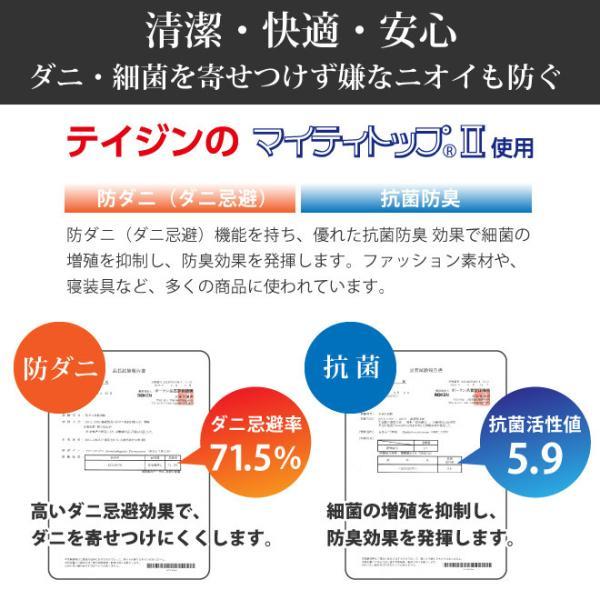 日本製 すのこ ベッド すのこ型除湿マット 防ダニ抗菌防臭 備長炭 帝人 エアジョブ ベッド用 シングル 結露 すのこマット 除湿シート 吸湿シート|plus1-store|13