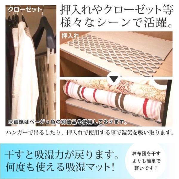 日本製 すのこ ベッド すのこ型除湿マット 防ダニ抗菌防臭 備長炭 帝人 エアジョブ ベッド用 シングル 結露 すのこマット 除湿シート 吸湿シート|plus1-store|17