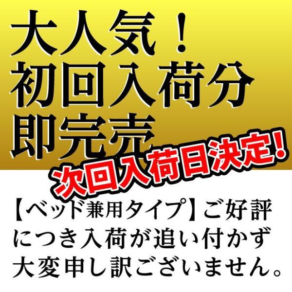 日本製 すのこ ベッド すのこ型除湿マット 防ダニ抗菌防臭 備長炭 帝人 エアジョブ ベッド用 シングル 結露 すのこマット 除湿シート 吸湿シート|plus1-store|05