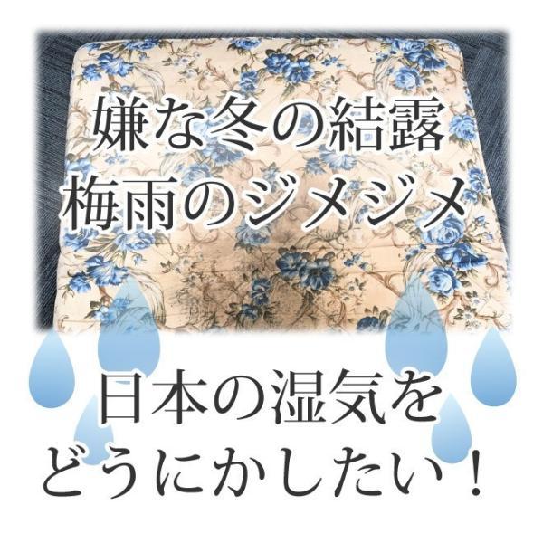 日本製 すのこ ベッド すのこ型除湿マット 防ダニ抗菌防臭 備長炭 帝人 エアジョブ ベッド用 シングル 結露 すのこマット 除湿シート 吸湿シート|plus1-store|06