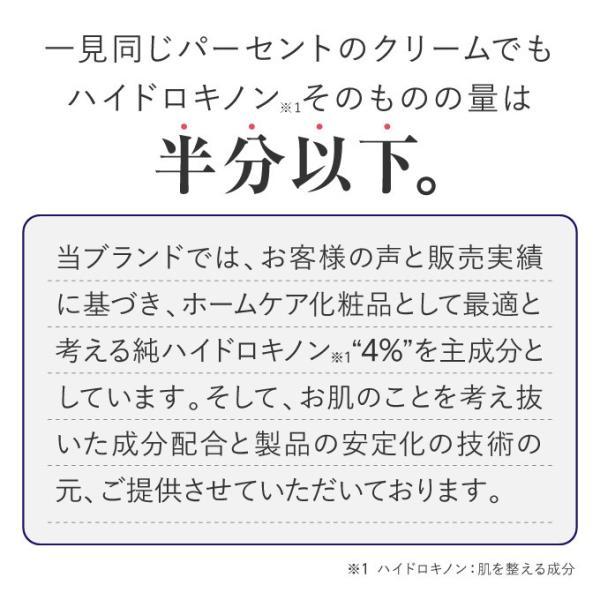 ハイドロキノン ケア 肌 プラスナノHQ1本 5g|pluskirei|05