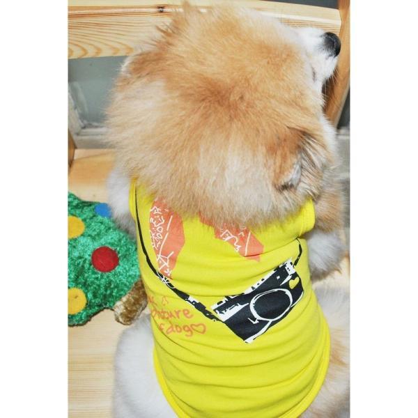 Tシャツ 犬服 ドッグウェア ドッグウエア プリントTシャツ ノースリーブ タンクトップ カメラ バンダナ スカーフ 英字 薄手 ペット服 犬用 ペッ|plusnao|02