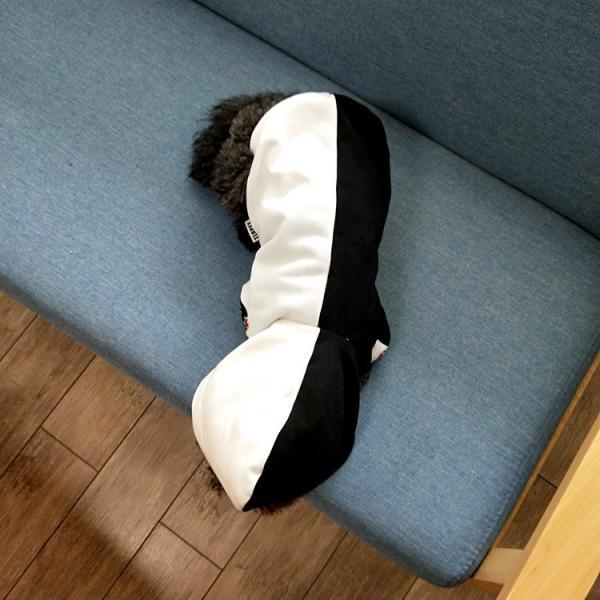 ペットウェア 犬服 パーカー ペア バイカラー 飼い主とお揃い 双子コーデ フード付き ペットウェア ドッグウェア ペット ペット用品 ペット服 長袖 plusnao 02