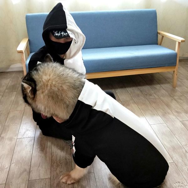 ペットウェア 犬服 パーカー ペア バイカラー 飼い主とお揃い 双子コーデ フード付き ペットウェア ドッグウェア ペット ペット用品 ペット服 長袖 plusnao 12