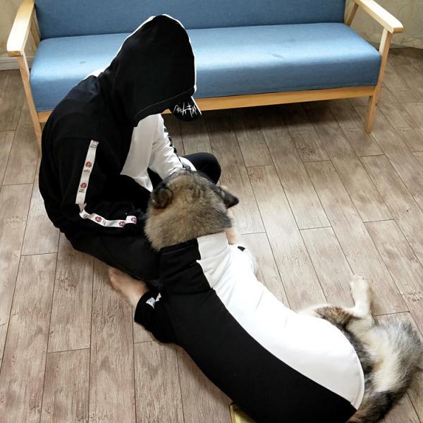 ペットウェア 犬服 パーカー ペア バイカラー 飼い主とお揃い 双子コーデ フード付き ペットウェア ドッグウェア ペット ペット用品 ペット服 長袖 plusnao 10
