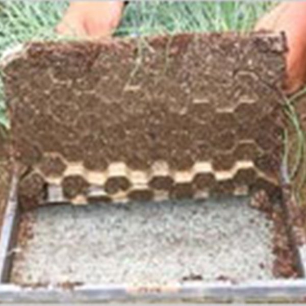 ネトマール 2 水稲育苗箱用 根止敷紙 300枚 277×577mm タ種DPZZ
