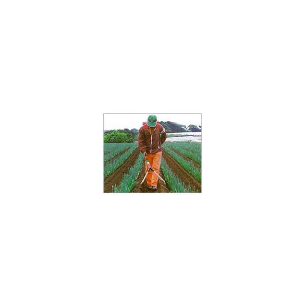 グリーンサンパー用 肥料二条マキパイプ ヤマト農磁 丸T 代引不可