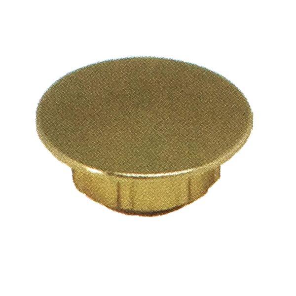 ビスキャップ ハイメタル ゴールド プラ8号箱 (600個入/1ケース)  ビス穴隠し ダンドリビス アミD