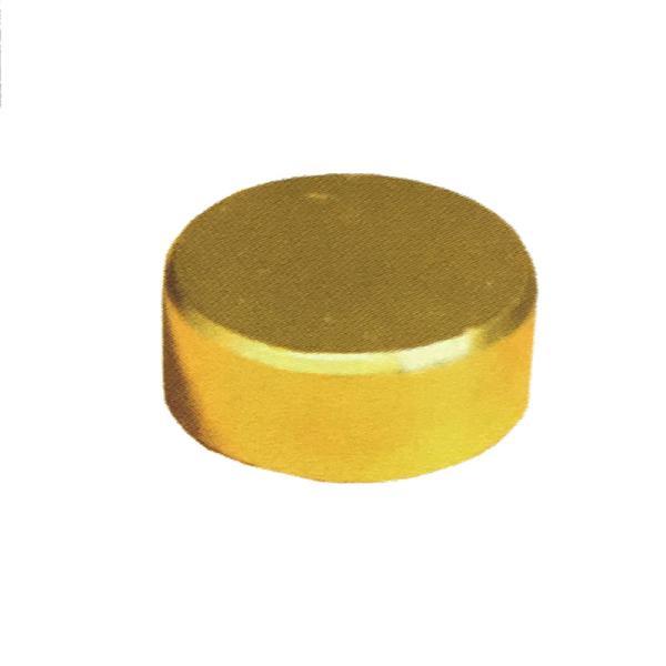太鼓鋲風 ネジキャップ 真鍮メッキ 丸平タイプ 50個入 プラ10号 屋内専用 ビス穴隠し ダンドリビス アミD