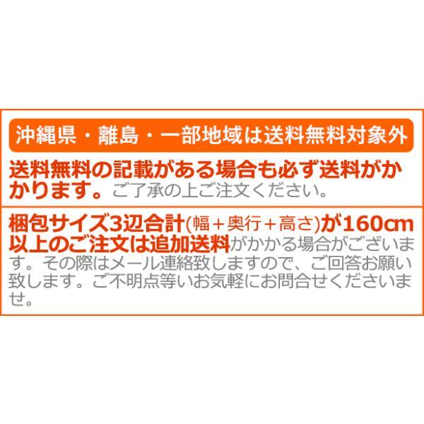 ミニ冷蔵庫 モビクール ミニフリッジ 2 MOBICOOL Mini Fridge 2 [F05 MB] 送料無料  特典付! あすつく対応|plywood|05