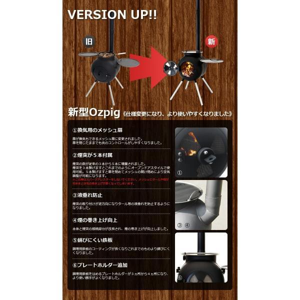 薪ストーブ ozpig オージーピッグ 本体セット ベーシックキット 送料無料 ポイント10倍 あすつく対応|plywood|04