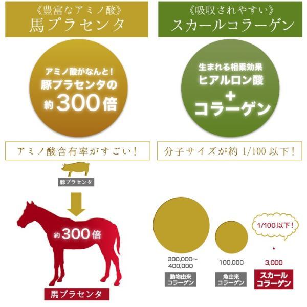 ピモレ Yahoo!店 - 美容ドリンク ヒアルロン酸 プラセンタ ...