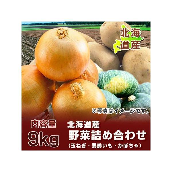 野菜 男爵いも・玉ねぎ・かぼちゃ 計9kg 価格3240円 北海道 野菜セット(じゃがいも だんしゃくいも たまねぎ 南瓜 1個)