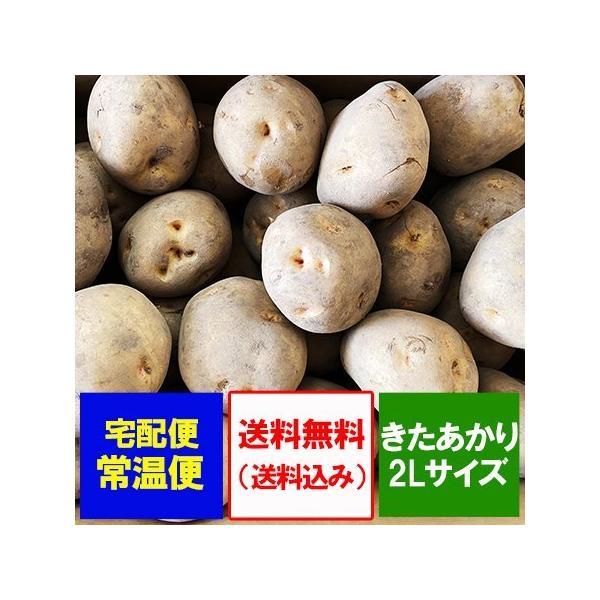 きたあかり 送料無料 北あかり 北海道産 じゃがいも きたあかり 10kg 2Lサイズ 1箱(1ケース) 価格3980円 北海道 ジャガイモ キタアカリ