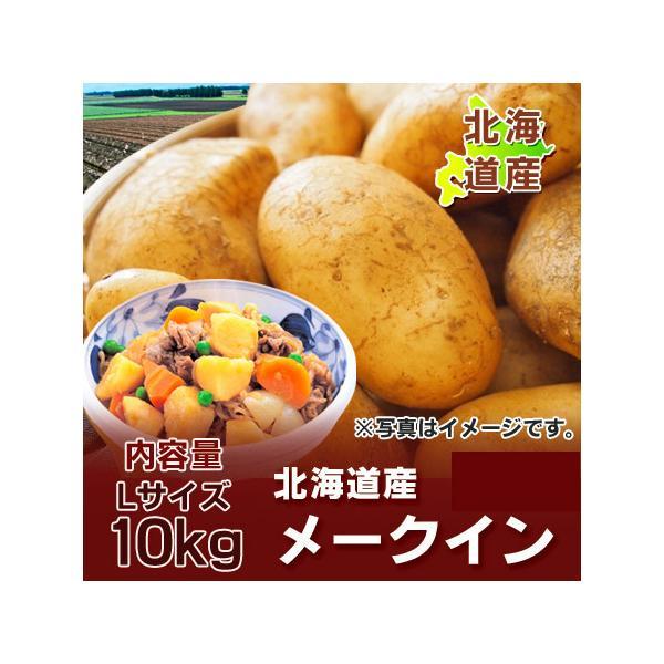 北海道 じゃがいも メークイン 北海道産 じゃがいも 10kg メークイン Lサイズ 価格3320円