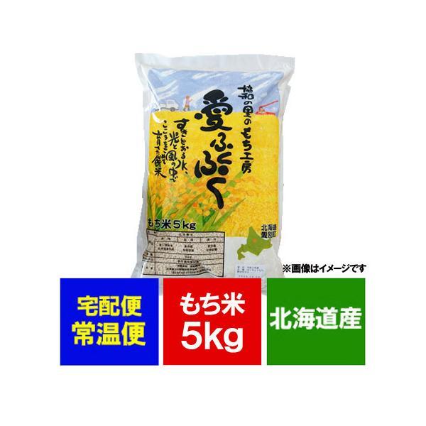 北海道米 もち米 5kg(5キロ) 価格2592円 北海道産米 餅米 令和2年産 品種 風の子もち米 単一原料米 もちごめ かぜのこ