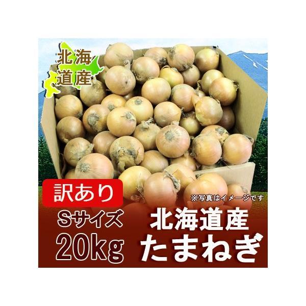 北海道 たまねぎ わけあり 北海道産 訳あり 玉ねぎ 20kg(20キロ)Sサイズ 価格 1698円 ワケあり 玉葱/タマネギ 玉ねぎ