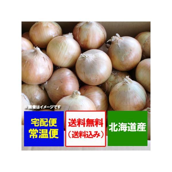 北海道 玉ねぎ 5kg 送料無料 玉葱(たまねぎ) 北海道産 たまねぎ 5kg(5キロ) Lサイズ 価格1980円 北海道 タマネギ/玉ネギ
