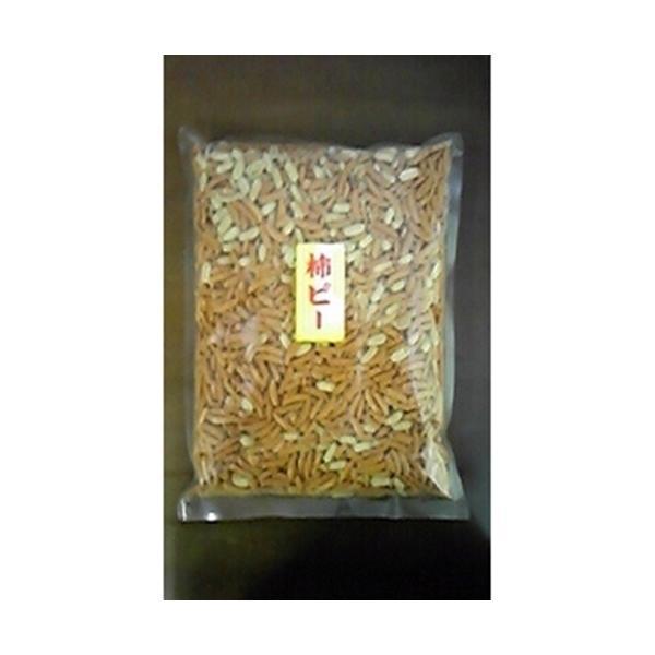 松川屋 柿ピーナッツ(落花生は中国産) 1kg