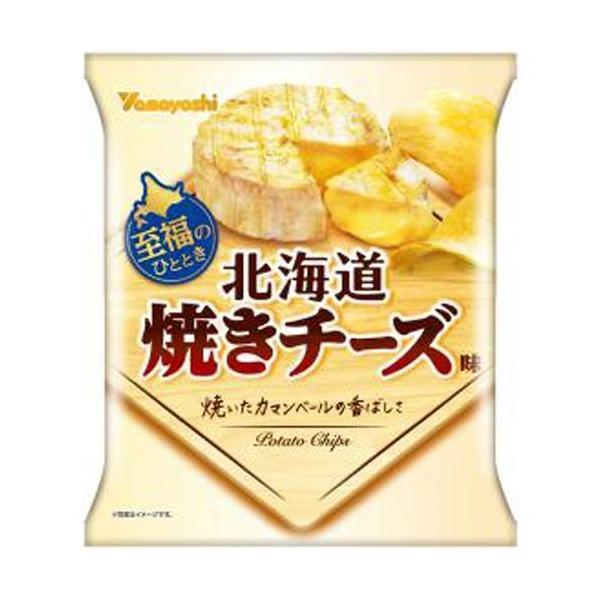 山芳製菓 ポテトチップス 北海道焼きチーズ味 50g×12入
