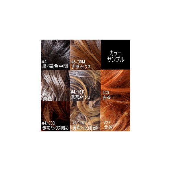バレッタ式ウィッグ つけ毛/非耐熱/PCA-283/ウィッグ/ネコポス可/バレッタ付ポイントウィッグ