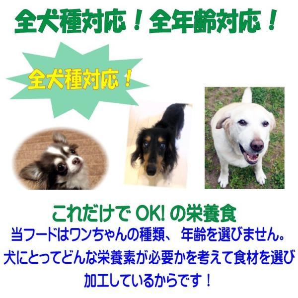 【ドッグフード工房】 手造りドッグフード お試しセット馬・鶏 2種類 小粒 (犬用全犬種対応)|potitamaya-y|03