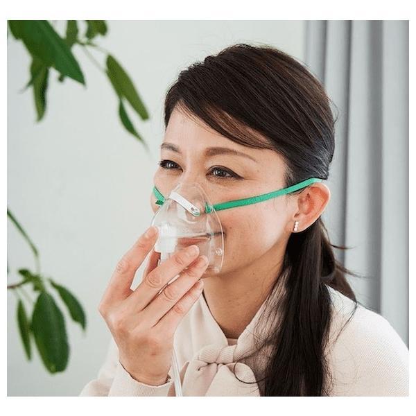 shenpix 酸素濃縮器 CFOC-F (流量5Lで濃度90%維持) CFOC-Fだけの専用酸素マスク付 酸素吸引器 酸素吸入器 酸素発生器|praspshop|11