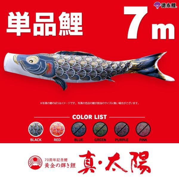 鯉のぼり太陽鯉1m単品 こいのぼり