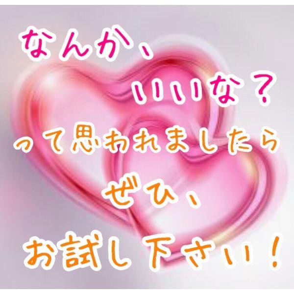 猫首輪 ライトパープル 鈴無 キャティーマン ミーチェ チャーム 送料無料 ポイント消化|premium-asuka|05
