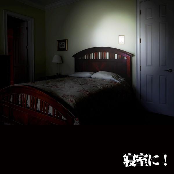 スイッチ照明LED(電気,ライ,ト照明,点灯,クローゼット,押し入れ,寝室,ベッドサイド,電源,点灯50時間)|premium-pony|03