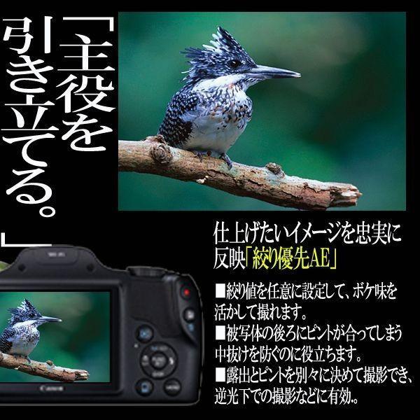 キヤノンPowerShot SX530 HS[豪華4点セット]( 画素 撮影 モニター 手ブレ 光学 Wi-Fi NFC カメラ ズーム キャノン )|premium-pony|07