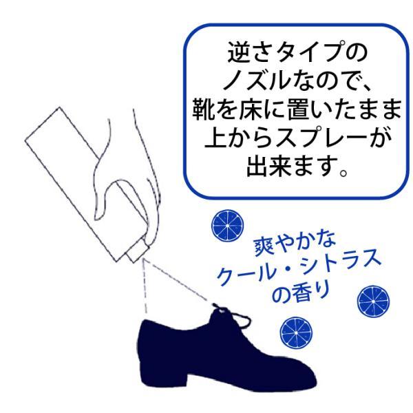 靴 消臭スプレー メンズ 男のガッツリ除菌 消臭靴スプレー