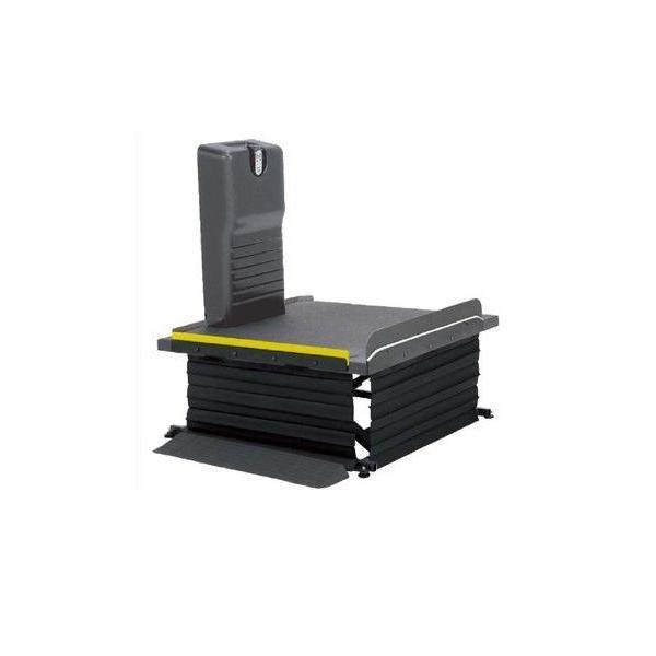 リーチ 電動式 モルテン 階段昇降機 介護 補助 移動