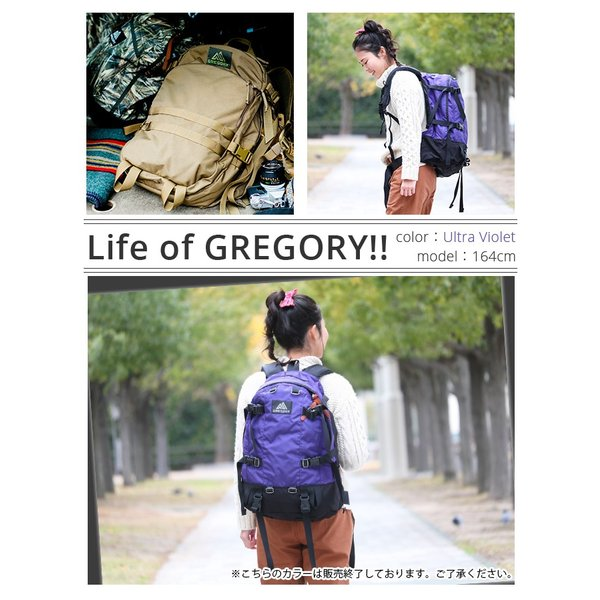 リュック グレゴリー GREGORY 33 クラシック 大容量 デイ&ハーフ DAY&A HALF デイパック リュックサック バックパック メンズ レディース ブランド pro-shop 03