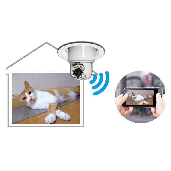 在庫限り ポイント5倍 電球型カメラiBULB SCOPE アイバルブスコープ ソケットに挿せばリアルタイム映像をスマホで確認できるWi-Fi接続専用ライブカメラ|pro-tecta-shop|03