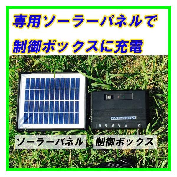 ポイント5倍 ソーラーLEDライト  SS-8800 キャンプ・屋外イベント・災害時にお勧め 太陽光発電しリチウムイオン電池に蓄電 PRO-TECTA|pro-tecta-shop|04