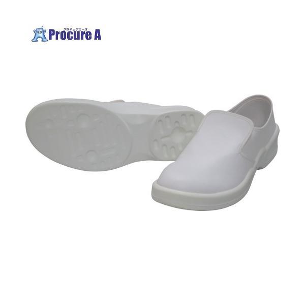 ゴールドウイン 静電安全靴クリーンシューズ ホワイト 28.0cm PA9880-W-28.0 ▼759-1772 (株)ゴールドウイン