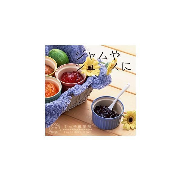 ブルーベリー 『 ピンクレモネード 』 2年生 10.5cmポット苗|produce87|07